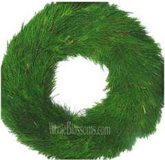 Florida Pine Christmas Wreaths