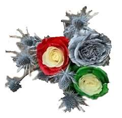 Holiday Sliver Rose Santa Collection