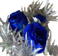 Holiday Wonderland  Blue and Silver Rose