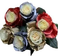 Metallic Blue Red and Golden Rose Collection