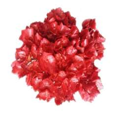 Metallic Glitter Red Airbrushed Hydrangea