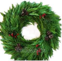 Mix Leyland Wreaths