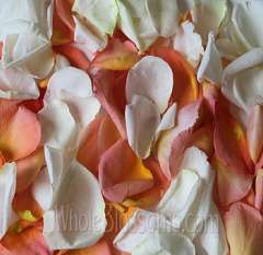 Mix Orange White Rose Petals