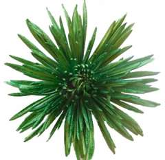 Anastasia Metallic Green Flowers