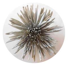 Spider Fall Mums - Metallic Silver Anastasia Flower