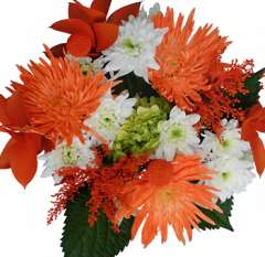 Splendor Thanksgiving Flowers