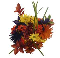 Sunset Centerpiece Flower Arrangement