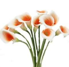 Tinted Mini Orange calla Lily