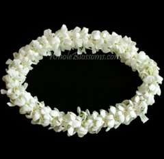 Double Lei White
