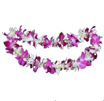 Lei Single White Purple Bombay