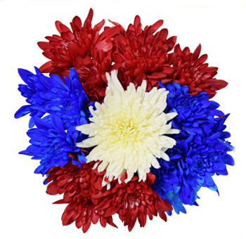 Cushion Poms Patriotic Flowers