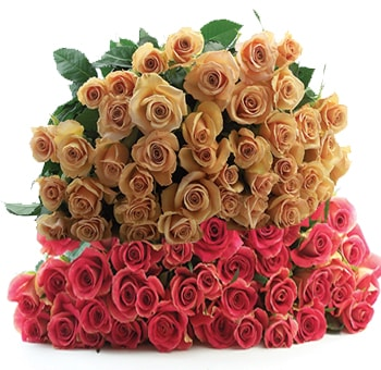 Buy Wholesale Flowers Online