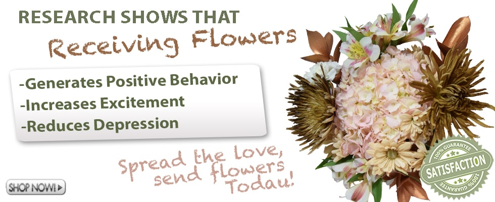 Send Flowers Online from Whole Blossoms