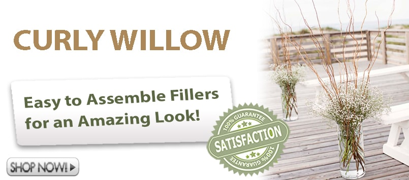 Wholesale Curly Willow