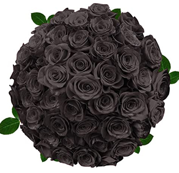 Black Rose Collection