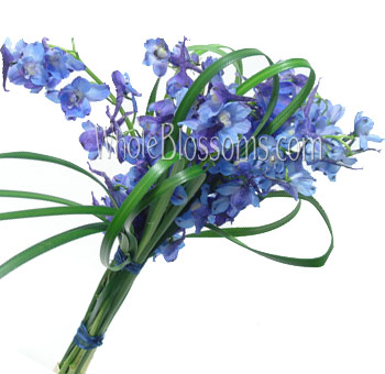 Blue Hand-Tied Delphinium Bridesmaids Bouquets