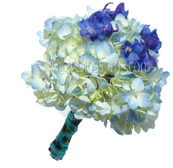 Hydrangea Flowers on The Colors In The Photos May Not Reflect Exact Color Of Flowers