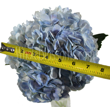 blue-hydrangea-flower-ruler