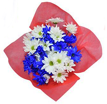 Blue Mix Memorial Day Pom Pom Flowers