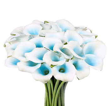 Blue Mini Callas