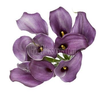 Lavender Calla Lily Bridesmaid Bouquets