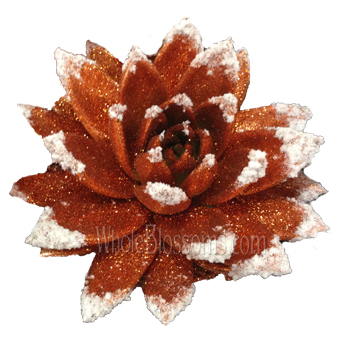 Bronze Glitter with Snow Succulent Flower