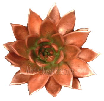 Bronze Painted Succulent Flower