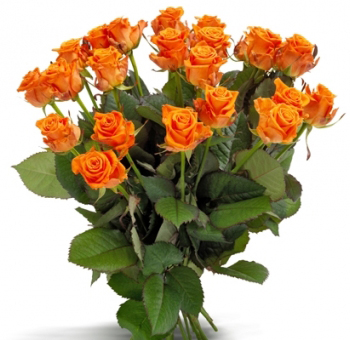 Long Stem Orange Roses