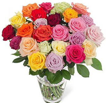 Wholesale Roses By Color