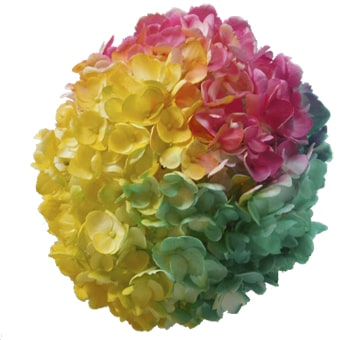 Buy Cut Hydrangeas Online : Tie Dye Yellow Hot Pink