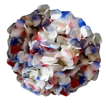 Blue Hydrangea Confetti Red White