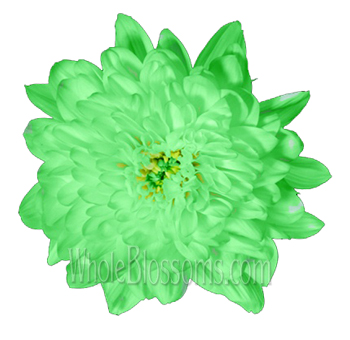 Cremon Tinted Green Flower