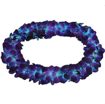 Dyed Bom Blue Double Lei