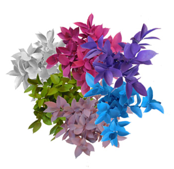 Easter Tinted Ruscus Decorations