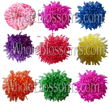 Jumbo Tinted Football Mum Assorted Flowers