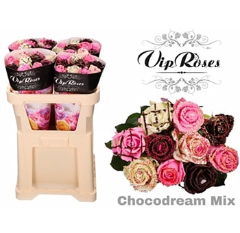 Fragrant Roses Choco Dream Gift