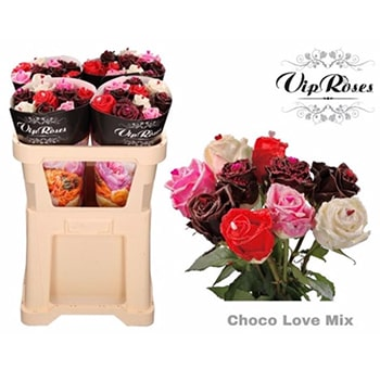 Fragrant Roses Choco Love Gift
