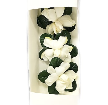 Gardenia Gift Box - Fresh Cut