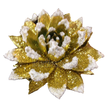 Gold Glitter with Snow Succulent Flower