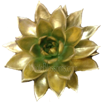 Succulent Painted Gold Flower