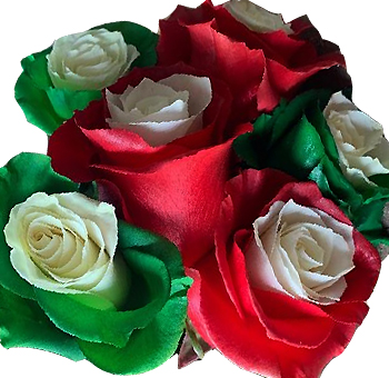 Green & Red Rose Christmas Flowers