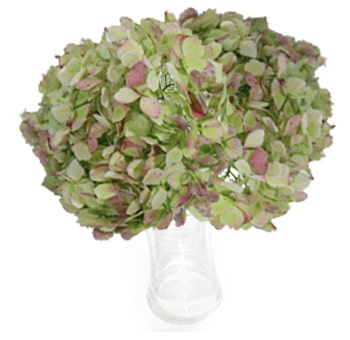 Green Antique Natural Hydrangea Bouquets