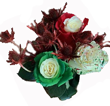 Holiday Confetti Red and Green Rose Collection