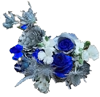 Holiday Royalty Blue Rose And Thistle