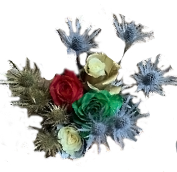 Holiday Wonderland Rainbow Roses