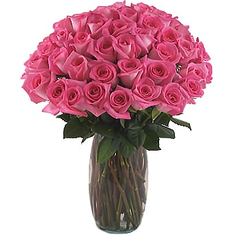 Hot Pink Rose Floral Arrangement