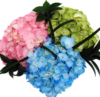 Painted Hydrangea Jubilee Arrangement Centerpiece