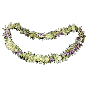 Jade Orchid Lei Single