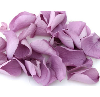 Lavender Rose Petals for Valentine's Day