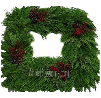 Leyland Fresh Cut Mix Squared Wreaths